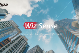 Dahua wizSense